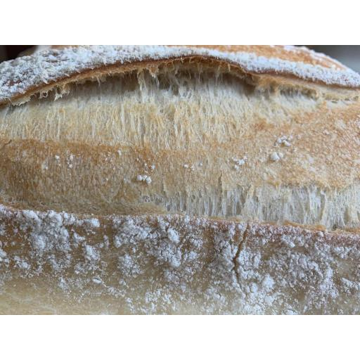 Sour Dough White Bloomer